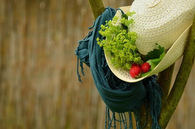 jahody v klobouku