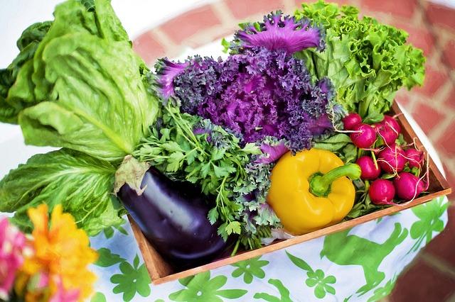 zelenina ze zahrady.jpg